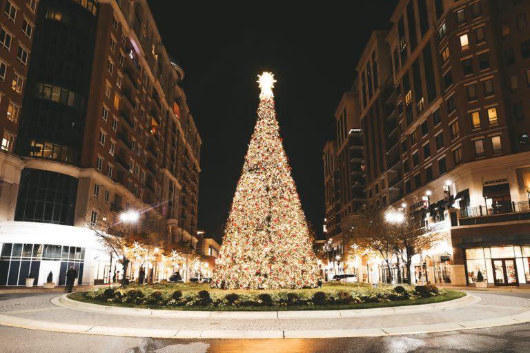 Annapolis Town Center Christmas Tree