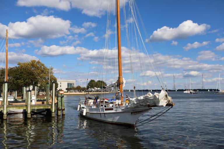 Sailboat - Wilma Lee