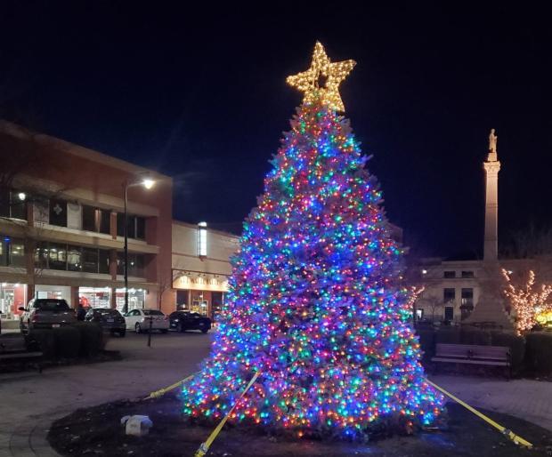 Downtown Racine Tree