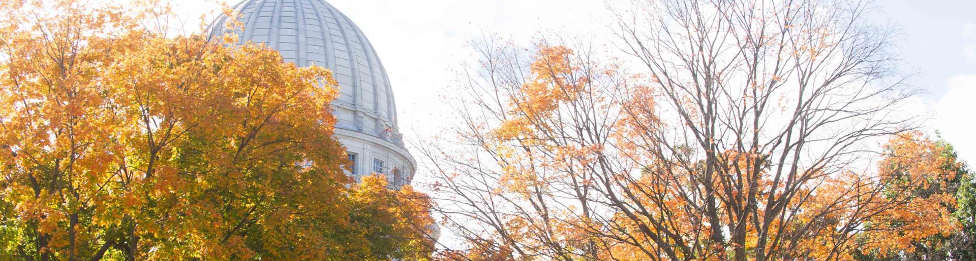 Capitol Fall