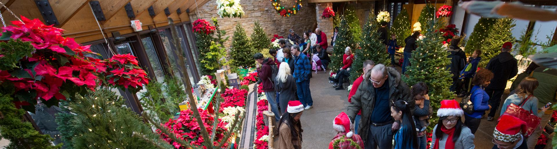 Holiday decorations inside Olbrich Botanical Gardens