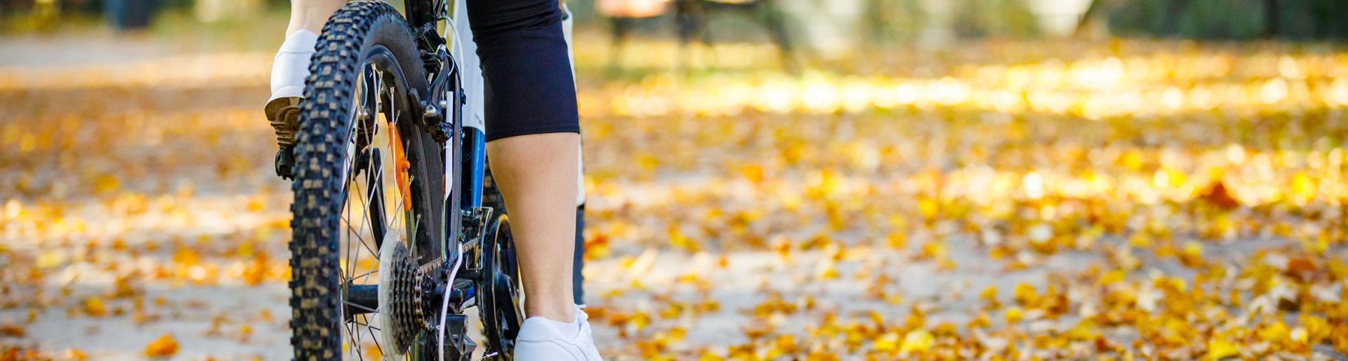 BikeToTable_IH-2460x660