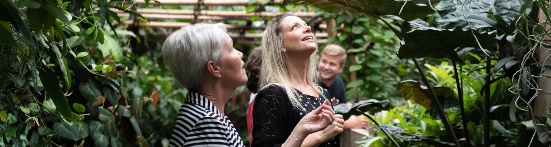 Olbrich Gardens Bolz Conservatory