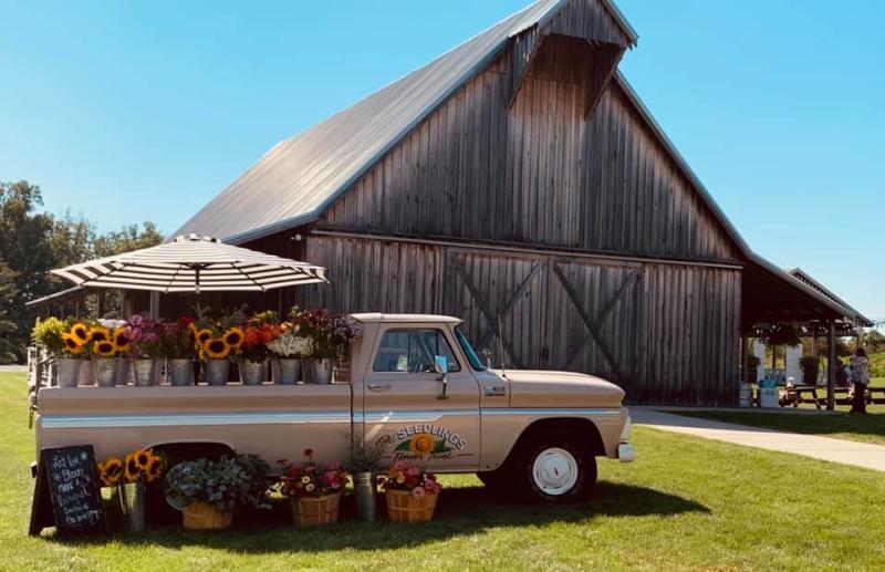 The Seedlings Flower Farm & Truck