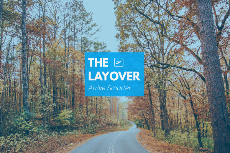 Layover Blog- The State of Fall and Holiday Travel- Nov17
