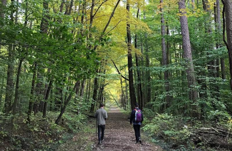 Two men hiking in the Hoosier National Forest