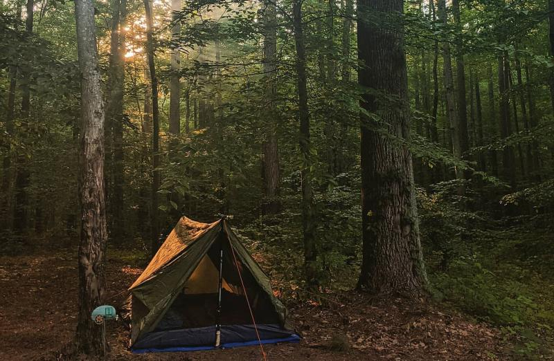 Dispersed campsite at the Hoosier National Forest