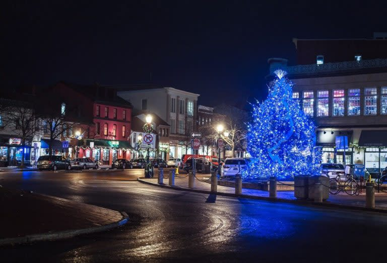 Grand-Illumination-Christmas-Tree