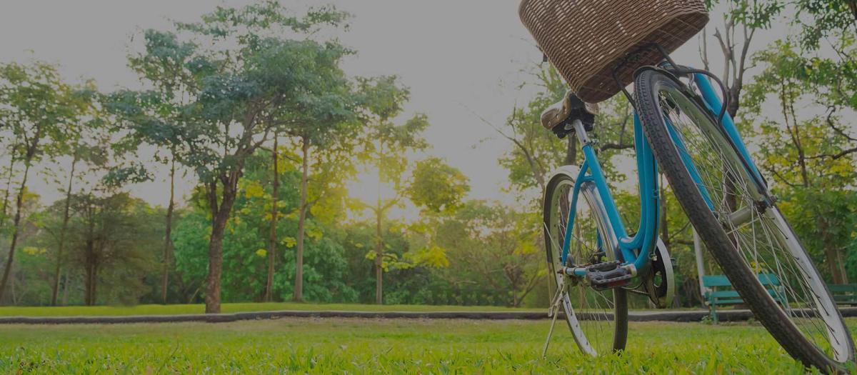 Getting Here Bike