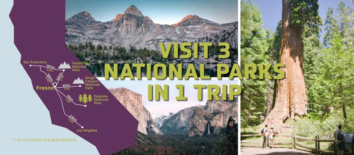 visit 3 in 1 trip