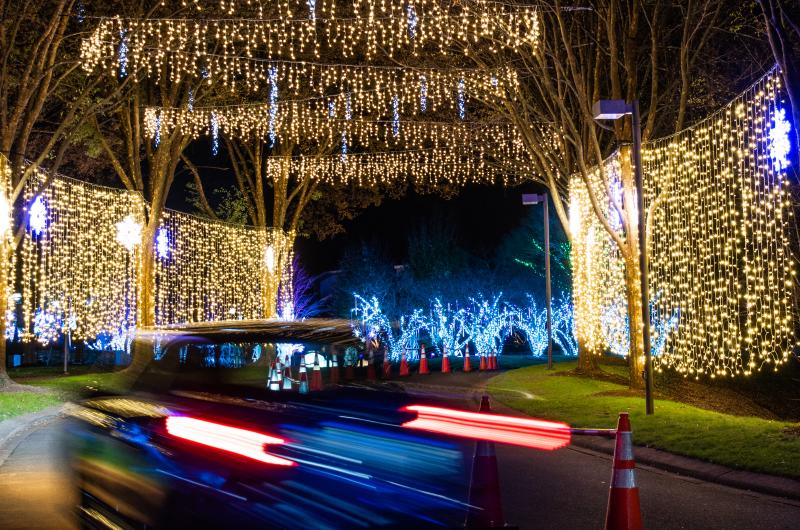 Drive through lights display as part of Winter Lights at the NC Arboretum in Asheville, NC