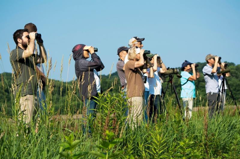 A group of people on a bird walk
