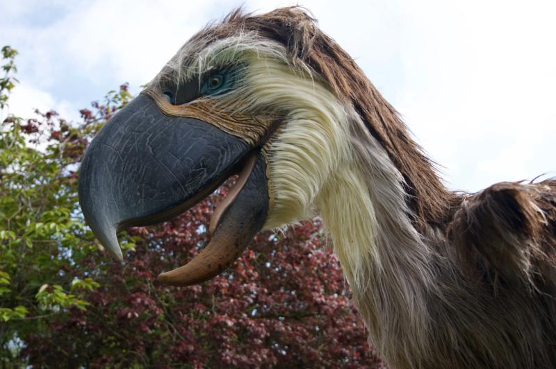 Prehistoric Beasts - Houstton Zoo