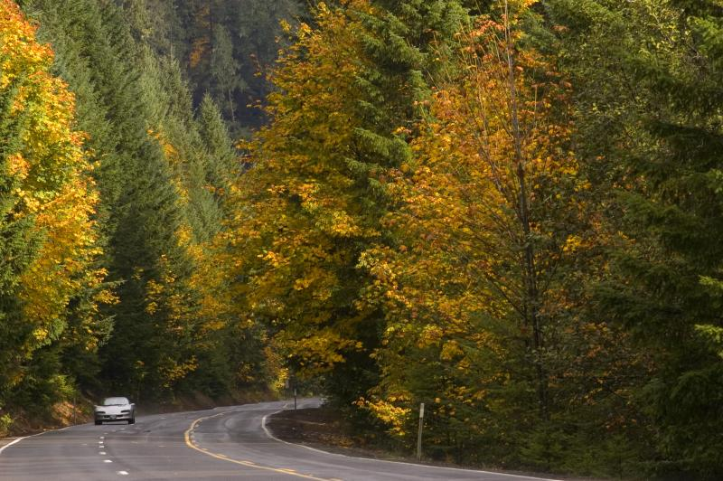 Fall Foliage on Highway 36 by Jamie Hooper