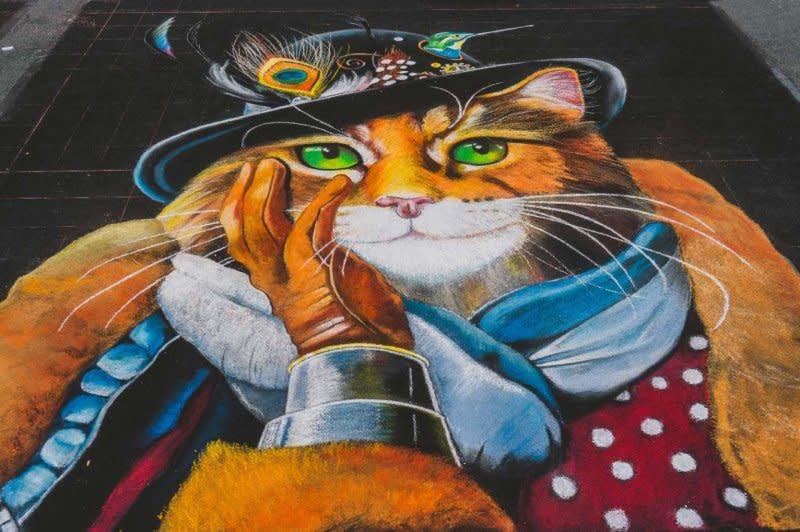 cat__wysiwyg
