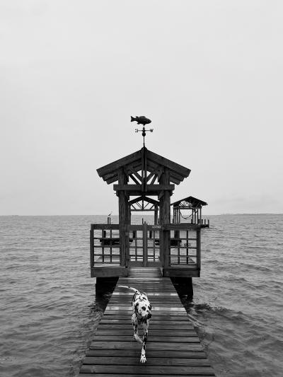 East Beach Ocean Springs - Adrian LaBorde
