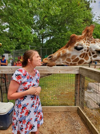 feeding giraffe at the zoo