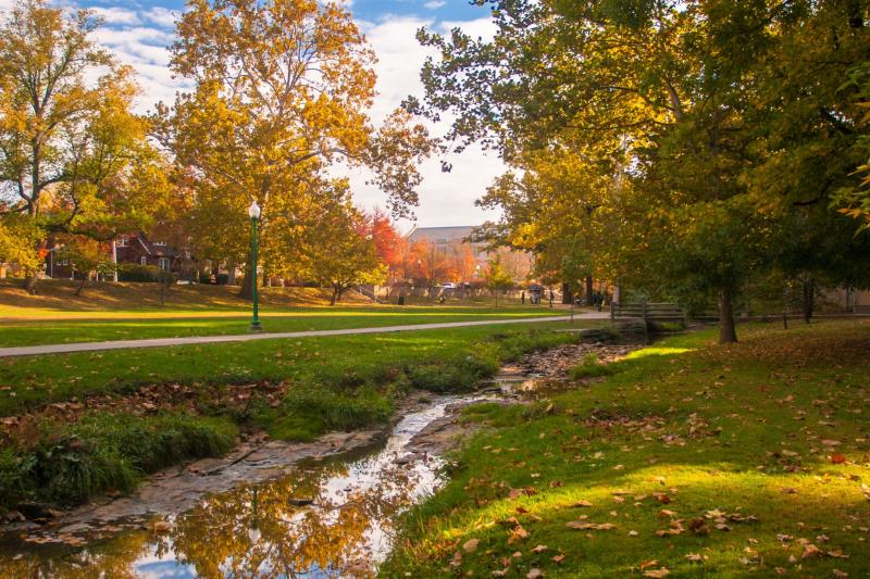 Dunn Meadow during fall