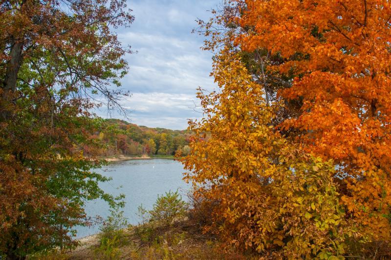 Fall Lake Bloomington