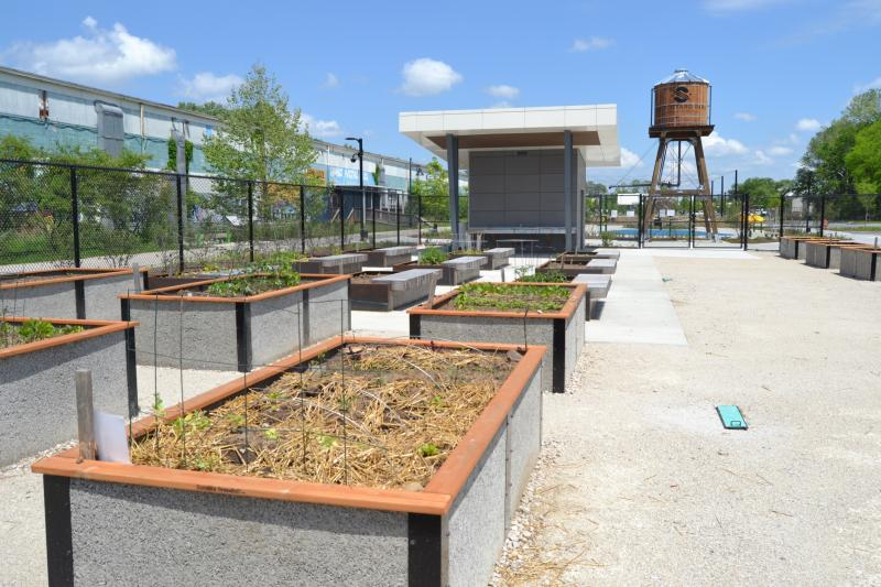 Community garden at Switchyard Park