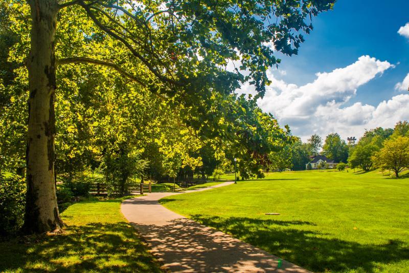 Dunn Meadow during summer
