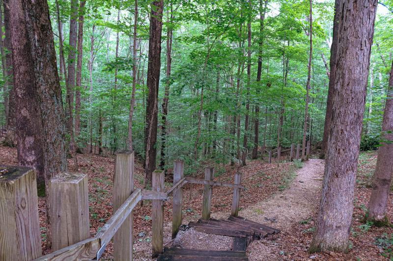 Hardin Ridge Ted T. Turtle Trail