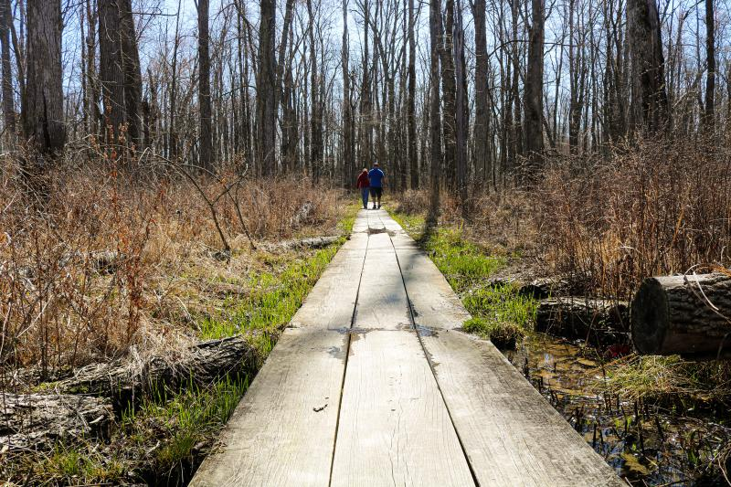 Couple walking on the raised platform at Beanblossom Bottoms during early spring