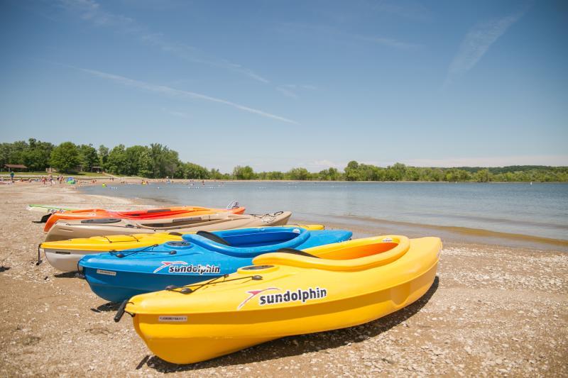 Kayaks lined up on Fairfax Beach