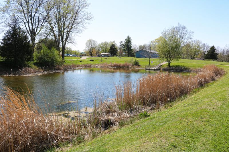 Fishing pond at Will Detmer Park