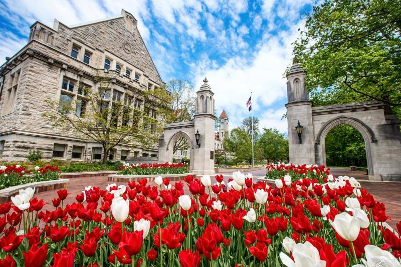 Sample Gates during spring with tulips