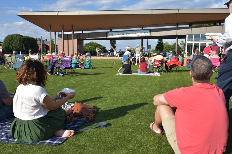 people on a lawn at a concert
