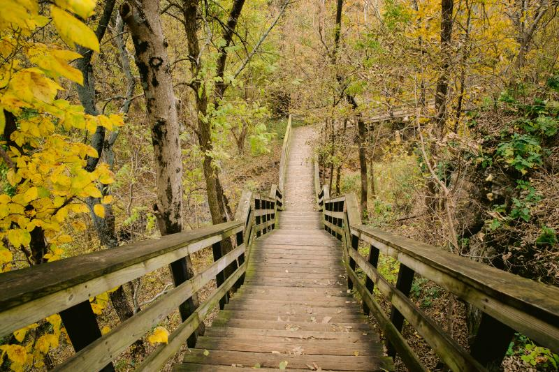 Wood pathway surrounded by fall color at Hayden Run Falls