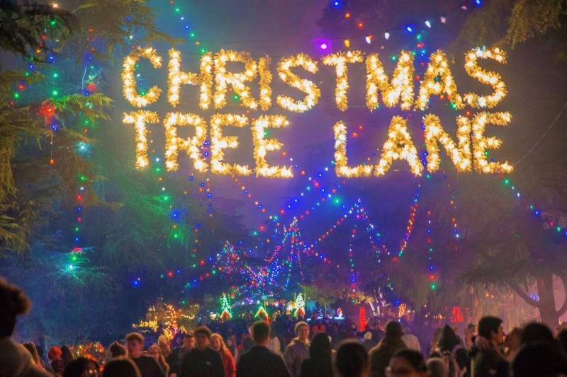 Christmas Tree Lane Overhead shot