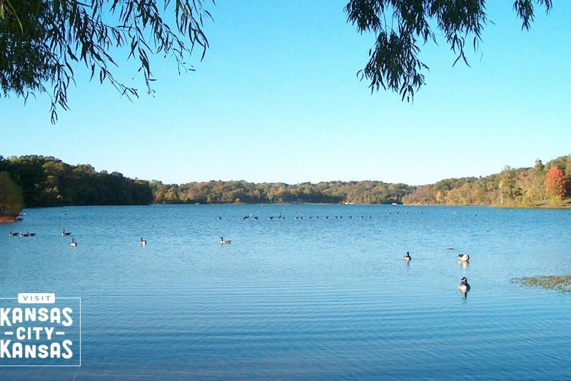 Wyandotte County Lake Park Virtual Background