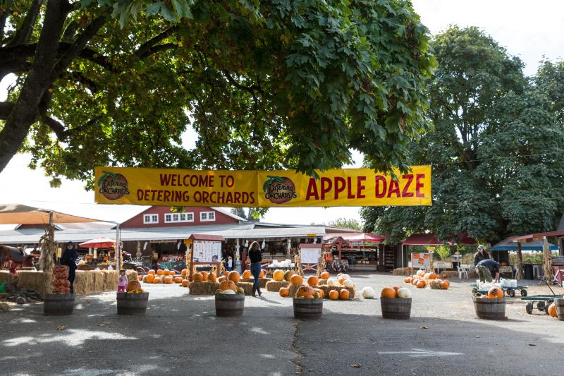 "Farm stand with pumpkins surrounded by trees with a large banner in front that says ""Welcome to Detering Orchards Apple Daze"""