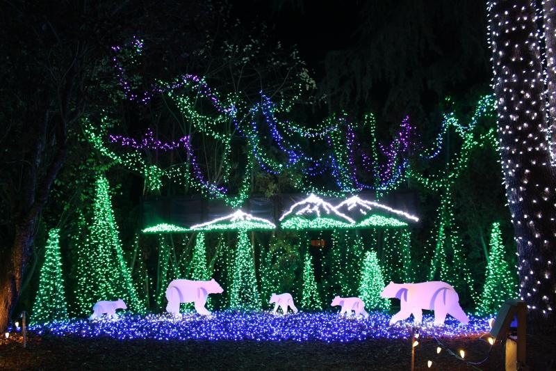 A scene of christmas lights depicting polar bears walking among trees at The Village Green