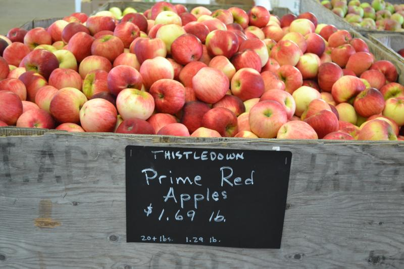 Apples at Thistledown Farm by Sally McAleer