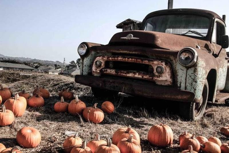 Vintage truck at the Pumpkin Patch in Andreotti Family Farm