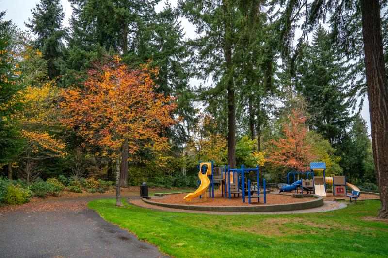 playground and autumn trees