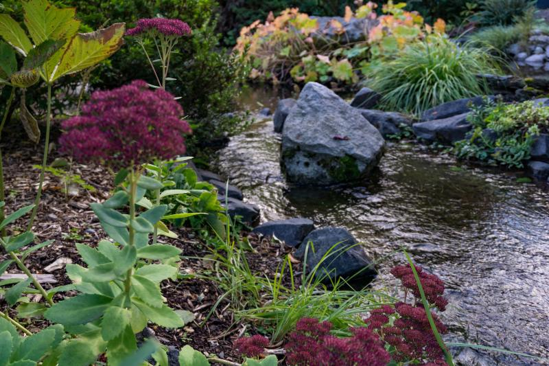 rock and stream in garden