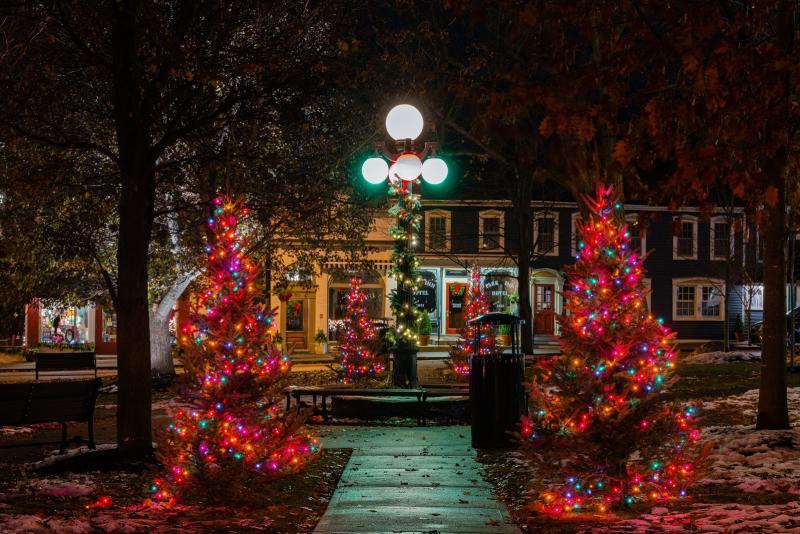 Hammondsport NY - Christmas in the Village Square
