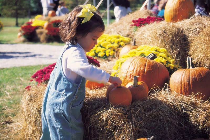 Brookgreen Gardens Harvest Home Weekend Festival