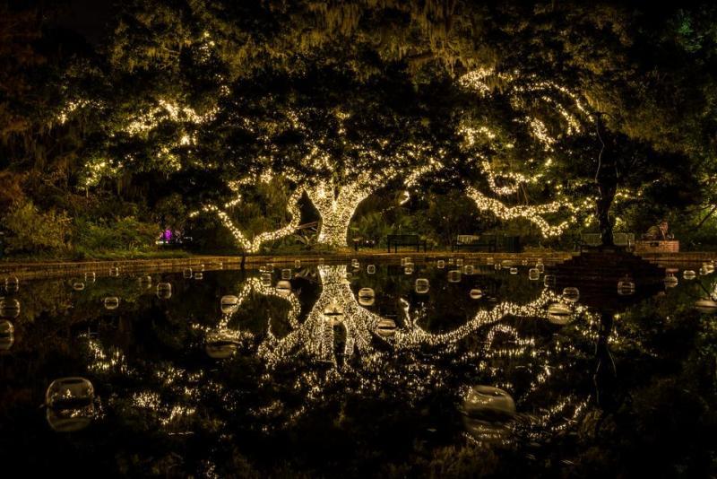 Brookgreen Gardens Nights of a Thousand Candles, Myrtle Beach, SC