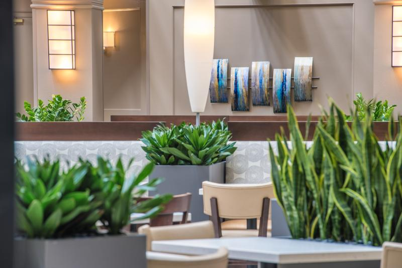 Lobby area with green plants at Embassy Suites in Tukwila