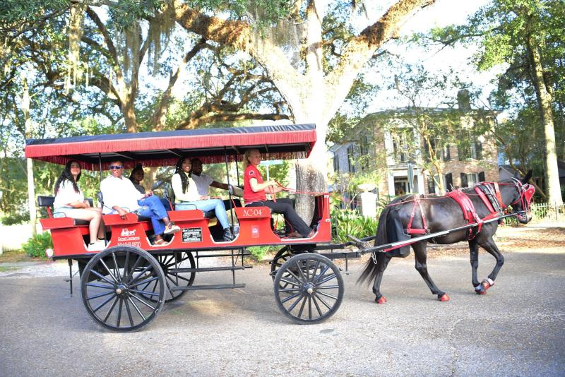 Royal Carriages gives mule-drawn carriage tours of historic Covington.