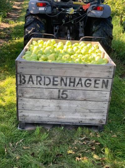 Bardenhagen Apple Harvest