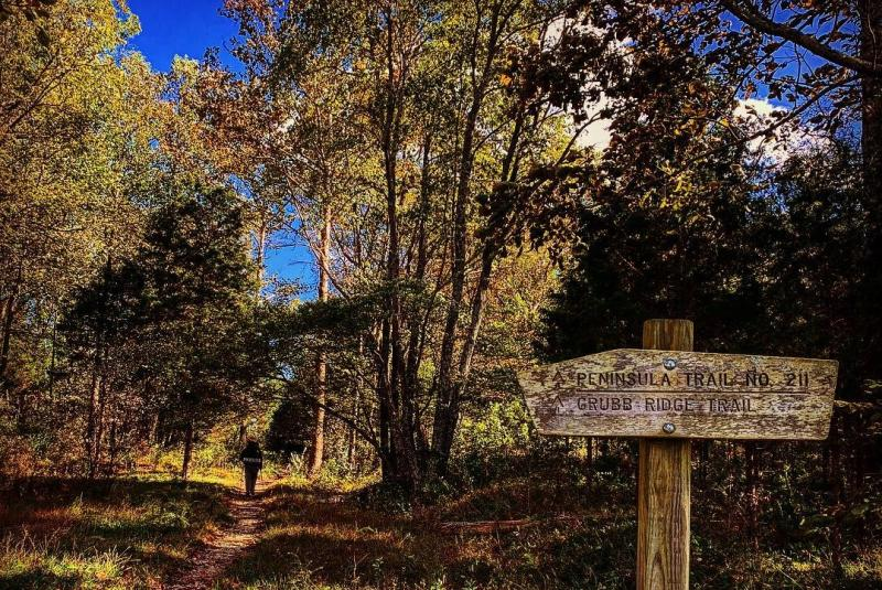 A hiker setting out on the Hoosier National Forest Peninsula Trail
