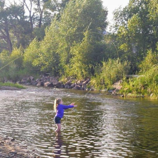 Fly-fishing in the Little Laramie River