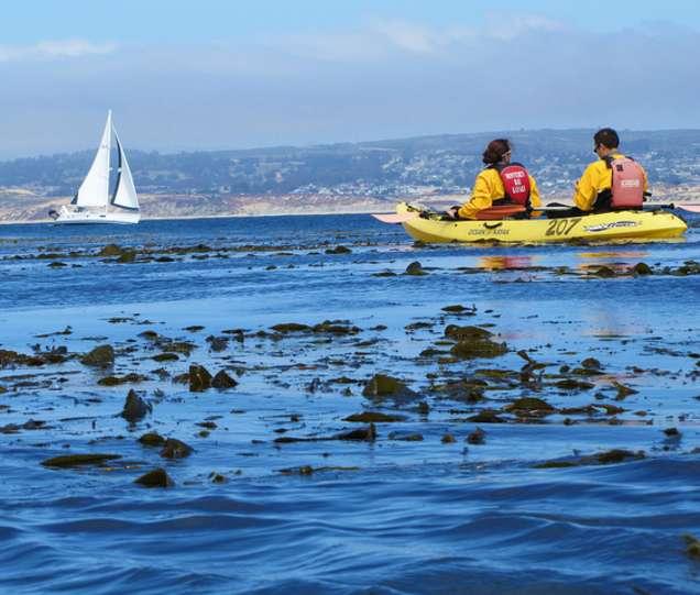 Dating Sites Monterey ca