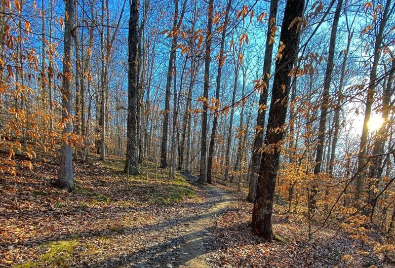 Hiking trail at Griffy Lake Nature Preserve